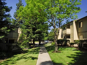 Antelope Woods Apartments | Citrus Heights, California, 95621   MyNewPlace.com