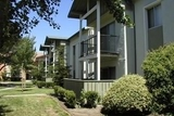 Monterey Pines Apartments