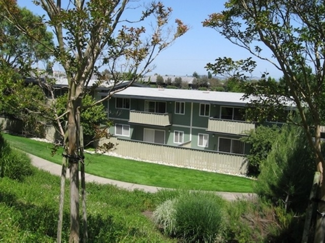 Apartment for Rent in Corte Madera