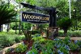 Woodhollow