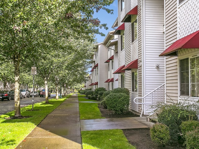 Apartment for Rent in Olympia