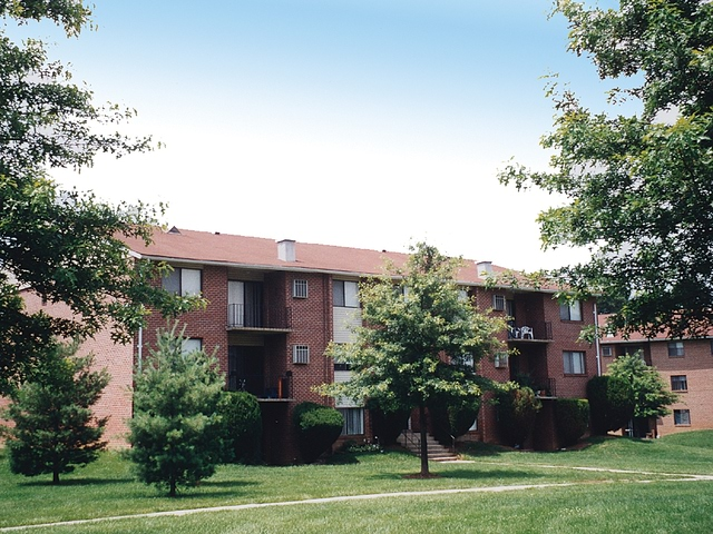 Apartment for Rent in Randallstown