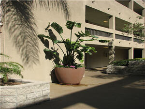 Renaissance Terrace | Long Beach, California, 90813  Low Rise, MyNewPlace.com