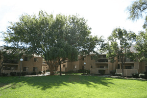 Presidents Park Apartments | Pittsburg, California, 94565   MyNewPlace.com