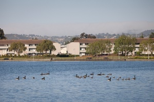 Harbor Cove | Foster City, California, 94404   MyNewPlace.com