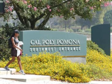 Cal Poly Pomona Off Campus Apartments