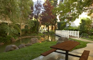 Park Regency Apartments | Walnut Creek, California, 94597   MyNewPlace.com
