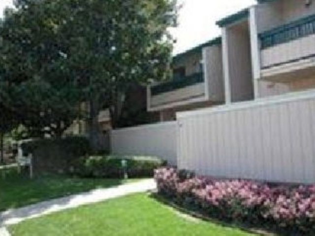 Apartment for Rent in Sunnyvale