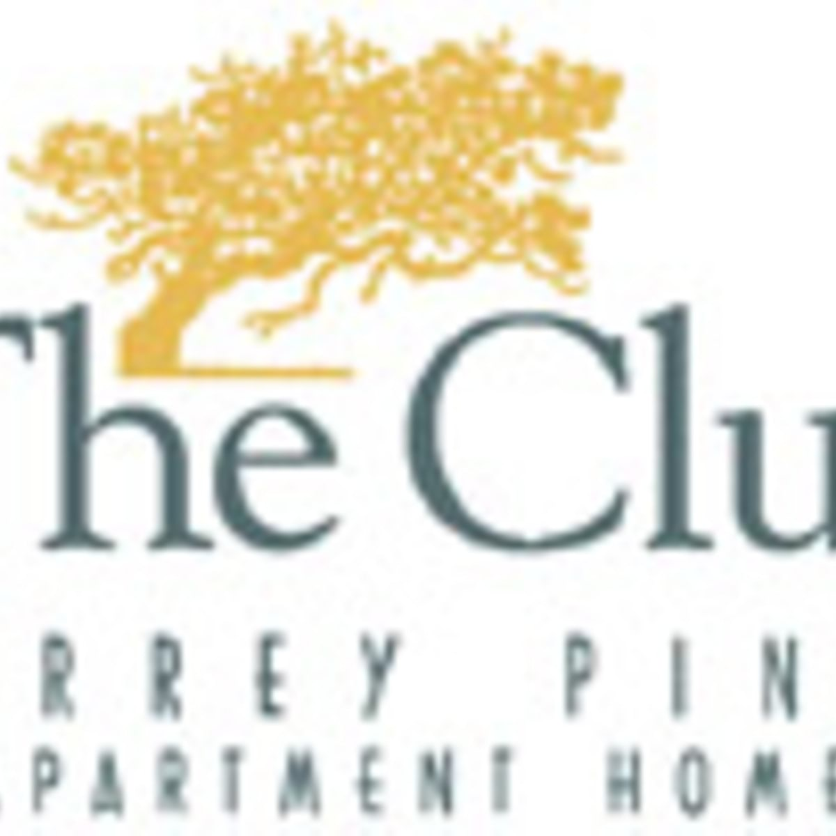 Torrey Pines Apartments: The Club Torrey Pines Apartments For Rent In San Diego CA