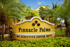 Contact Pinnacle Palms