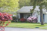 Pine Oaks Village III