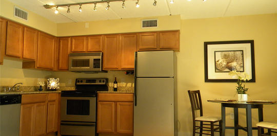 urban oasis luxury furnished apartments tampa fl apartments for rent