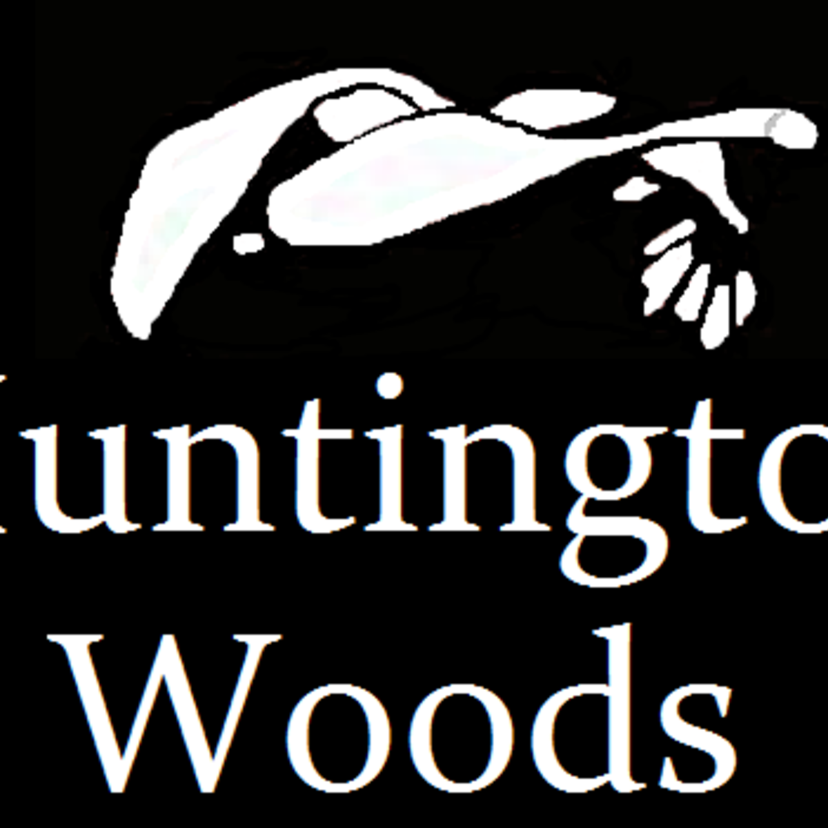 Huntington Woods Apartments: Huntington Woods Apartments In Friendswood, TX