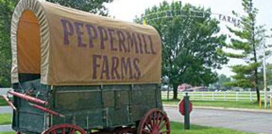 peppermill farms indianapolis in apartments for rent
