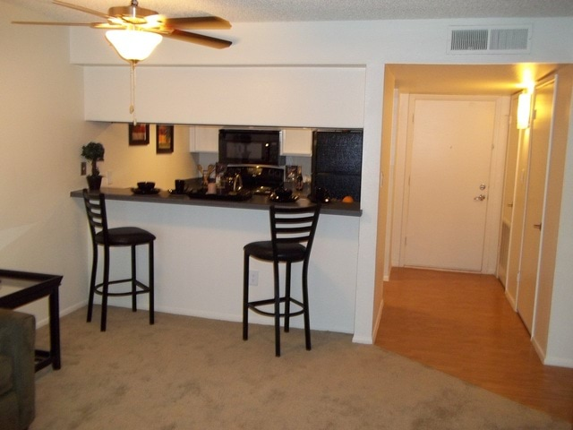 Pet Friendly for Rent in Mesa