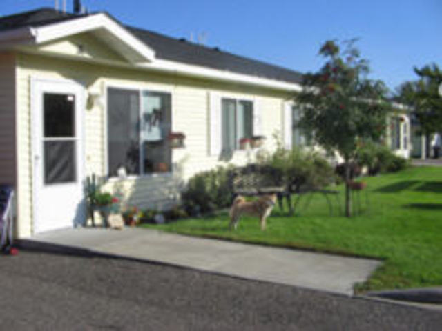 Pet Friendly for Rent in Prescott