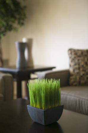 Contact SDK Green Acres Homes