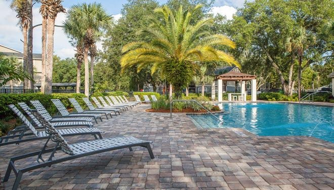 The Livingston Apartments Tampa Fl
