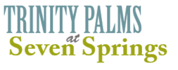 Trinity Palms at Seven Springs