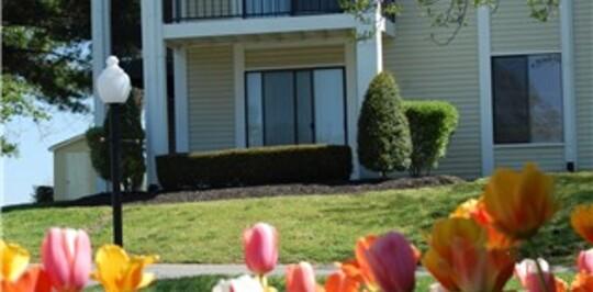 Starline apartments nashville tn apartments for rent for 500 brooksboro terrace