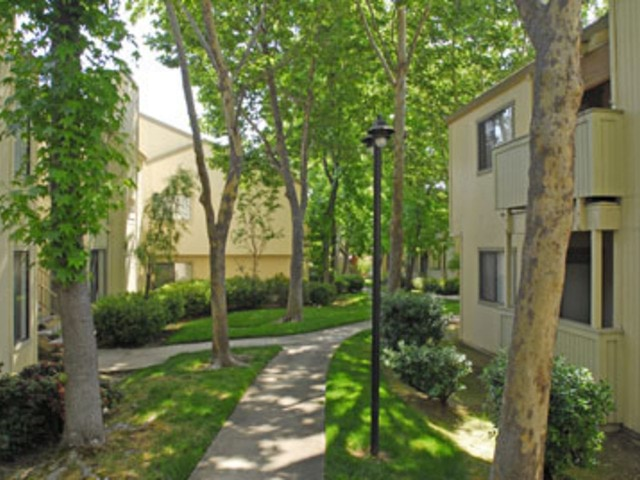 Apartment for Rent in Fair Oaks