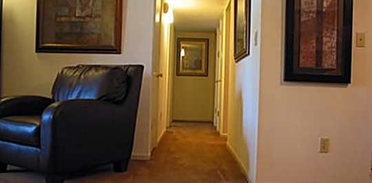 University Downs Apartments Apartment In Tuscaloosa Al 1 Bedroom ...