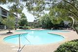 Scofield Park At Austin