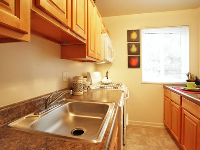 Apartment for Rent in Suitland