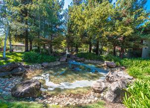 San Jose Apartments At Fountain Park