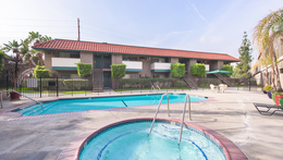 Community Features And Amenities