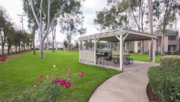 Features And Amenities - Barbecue Picnic Area
