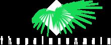 Palms on Main