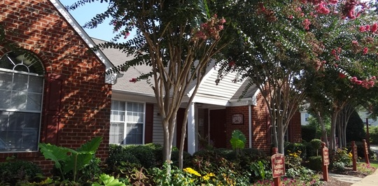 River Birch at Town Center - Raleigh, NC Apartments for Rent