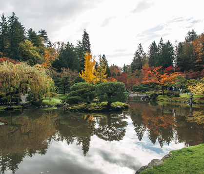 Local Park in Seattle with bridge, lake and trees with fall changing leaves.
