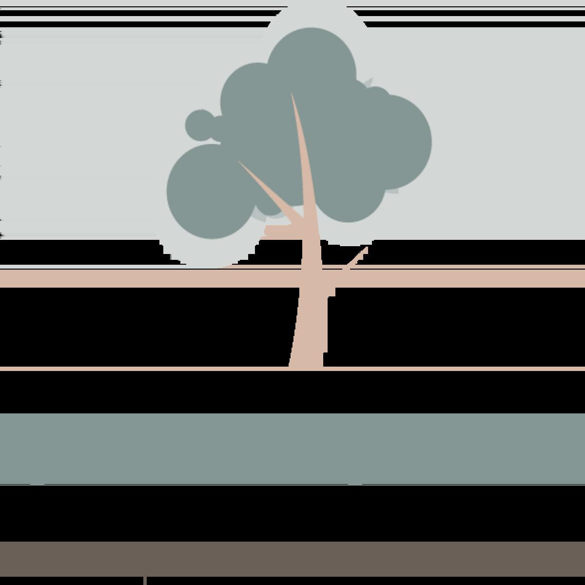 Apartments in Northeast San Antonio | Sedona Canyon