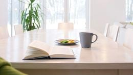 Stock image of dining table with plant in backgroud