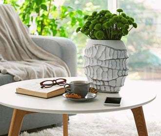 Villa De Las Flores - Stock photo of a coffee table with glasses on top on a book, a cup, a mobile phone, and plants.