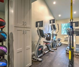 Fitness center with cardio equipment, TRX gear, and medicine balls.