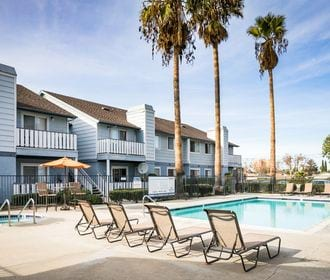 Camden Park - Image of the community swimming pool paired with a spa and welcoming lounge chairs.