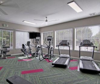 Full body work out center with weights, cardio and strength training equipment.