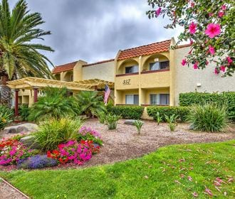 Leasing office entryway with pale yellow pergola, floral landscaping, bushes, and a large palm tree.