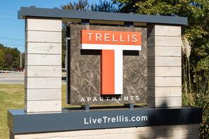Contact Trellis