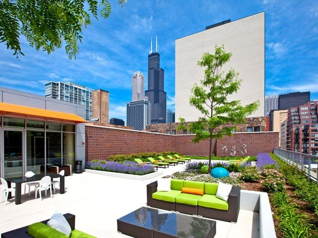 Pet Friendly for Rent in Chicago