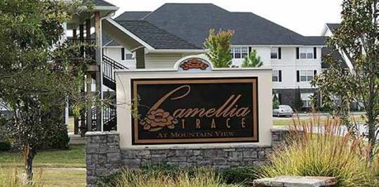 Camellia Trace at Mountain View - Maryville, TN Apartments for Rent