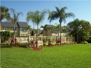 Town Place Apartments | Clearwater, Florida, 33765  Garden Style, MyNewPlace.com