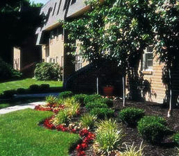 Apartments At Pine Brook | Newark, Delaware, 19711  Garden Style, MyNewPlace.com