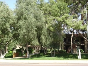 Orange Tree Villa | Scottsdale, Arizona, 85251  Garden Style, MyNewPlace.com