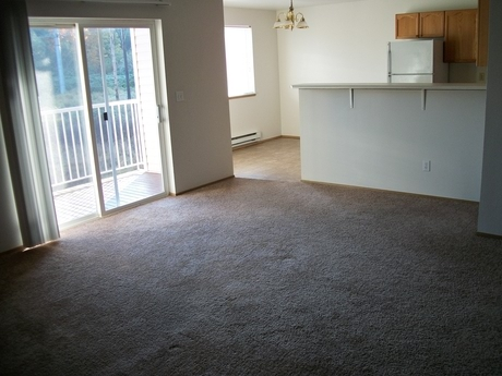 Pet Friendly for Rent in Arlington