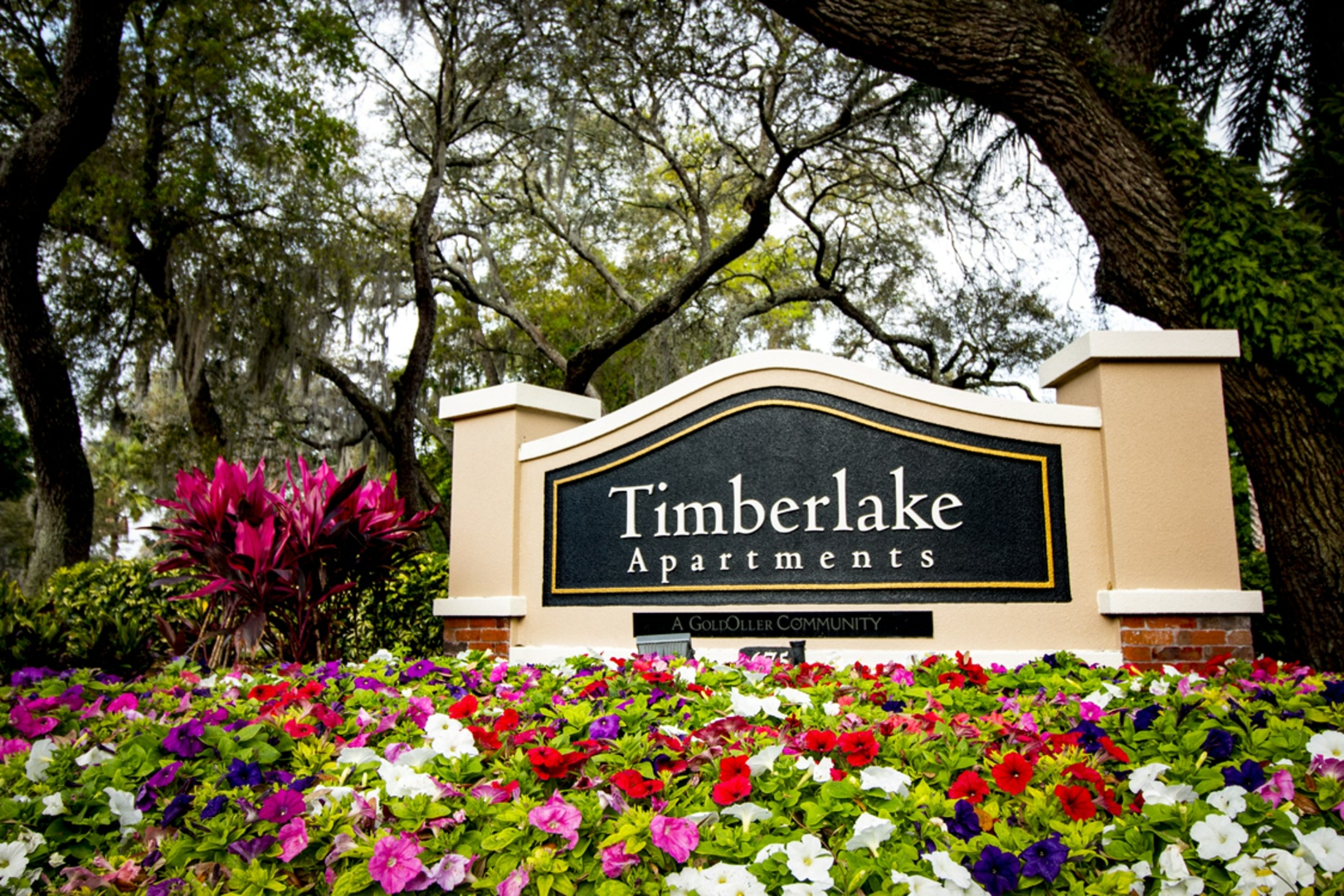 Apartments For Rent Altamonte Springs Fl Timberlake Apartments
