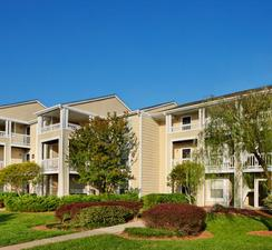 Mission University Pines | Durham, North Carolina, 27707  Garden Style, MyNewPlace.com